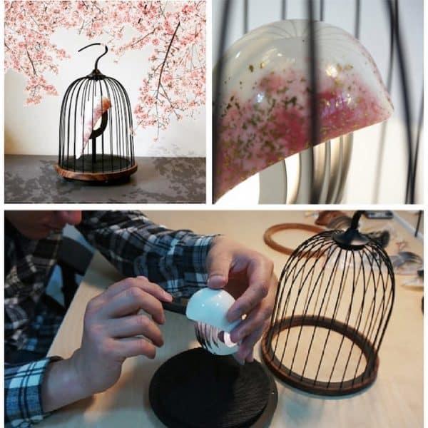 JinGoo - Cherry Blossom (2)