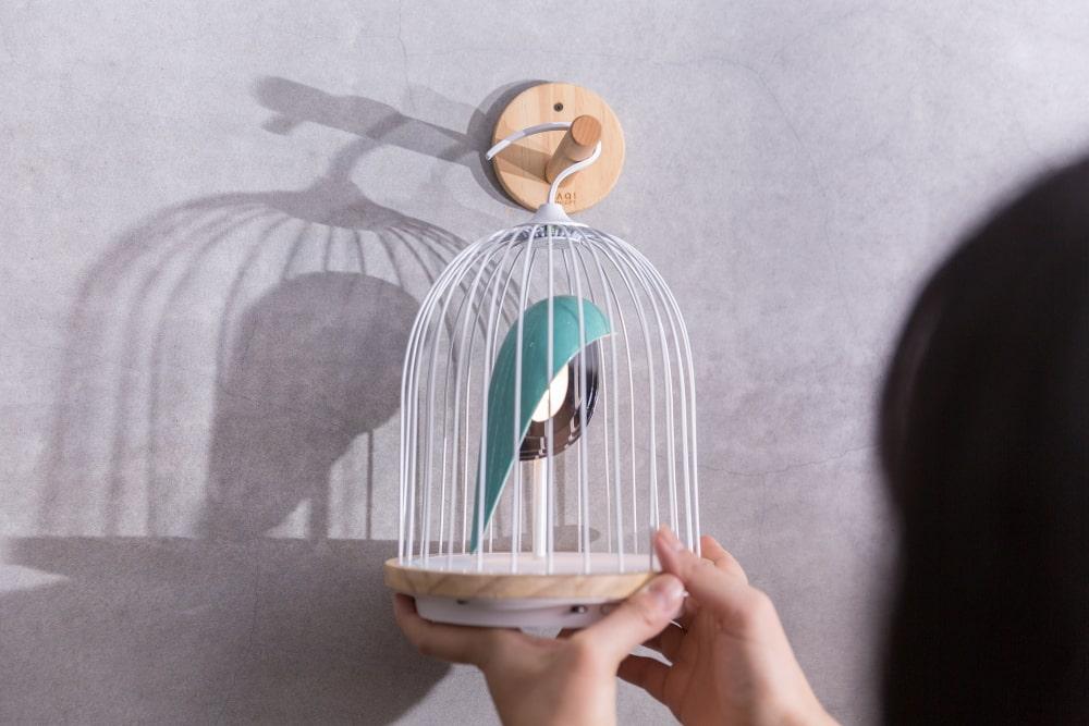 JinGoo - L'oiseau bleu (1)