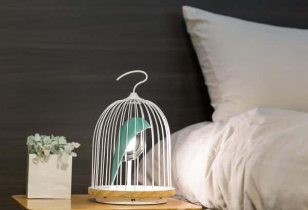 JinGoo - L'oiseau bleu (2)